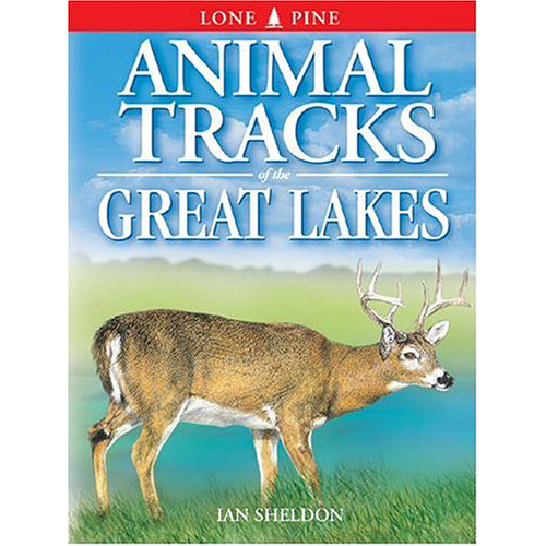 Animal-Tracks-of-the-Great-Lakes
