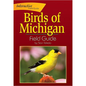 Birds-of-Michigan